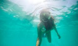 viaje-snorkel-aruba-caribe